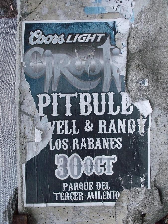 Concert Photograph - Pitbull by Anna Villarreal Garbis