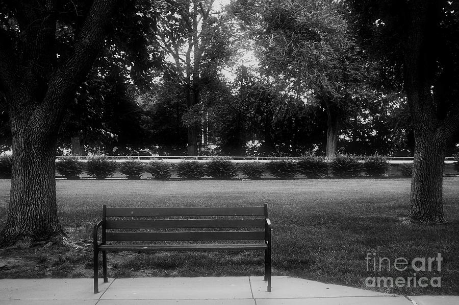 Bench Photograph - Place In The Shade by Kathleen Struckle