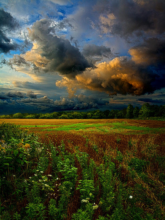 Horizons Photograph - Places In The Heart by Phil Koch