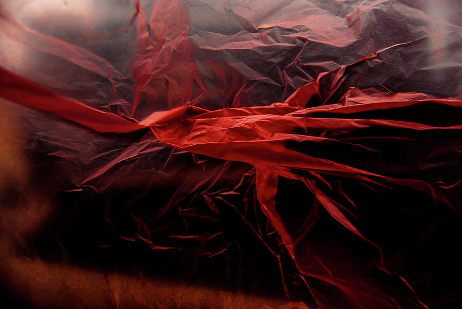 Plastic Photograph - Plastic Bag 05 by Grebo Gray