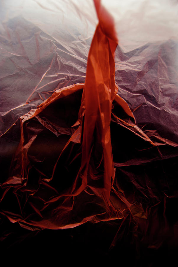 Plastic Photograph - Plastic Bag 07 by Grebo Gray