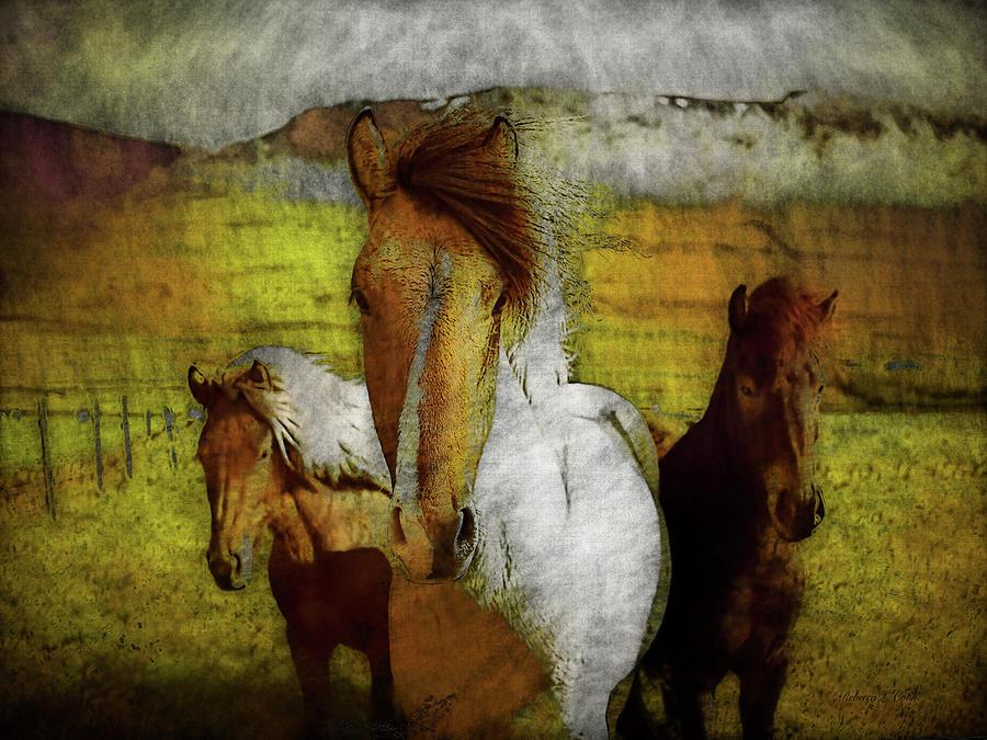 Plateau Ponies Photograph