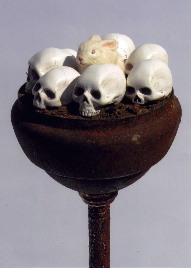 Skulls Sculpture - Play Boy by Jarad Bryant