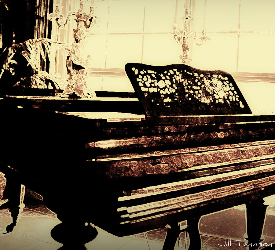 Music Photograph - Play With Me by Jill Tennison