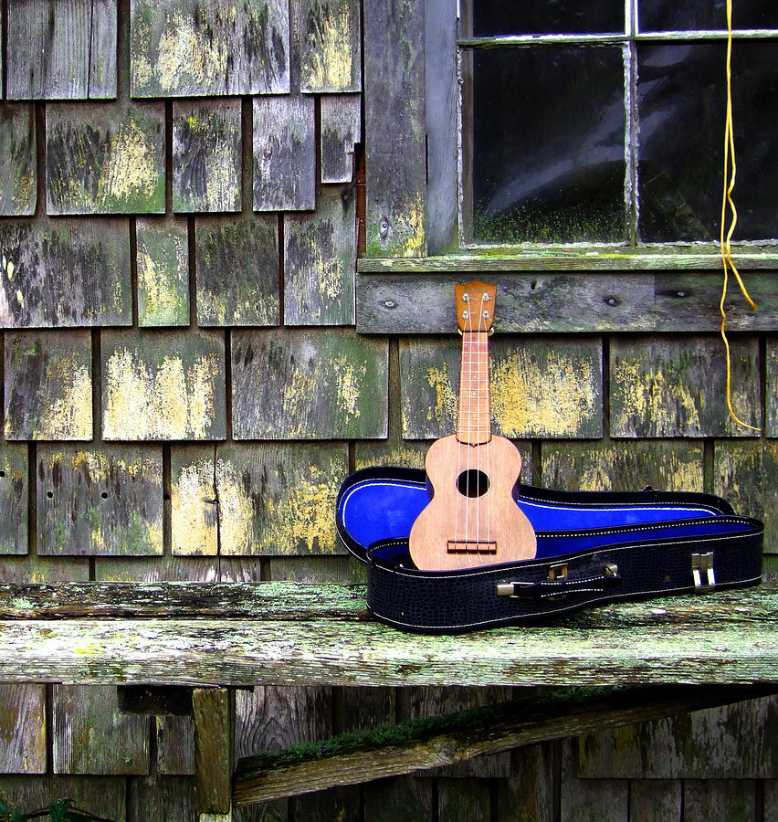 Ukulele Photograph - Play With Me by Kerry Hartjen