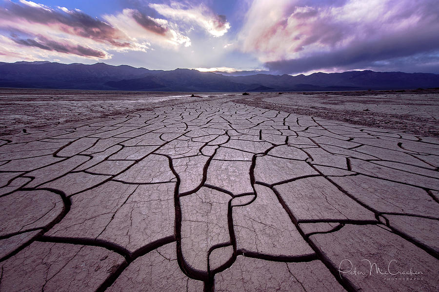 Death Valley Photograph - Playa  Tracks by Peter McCracken