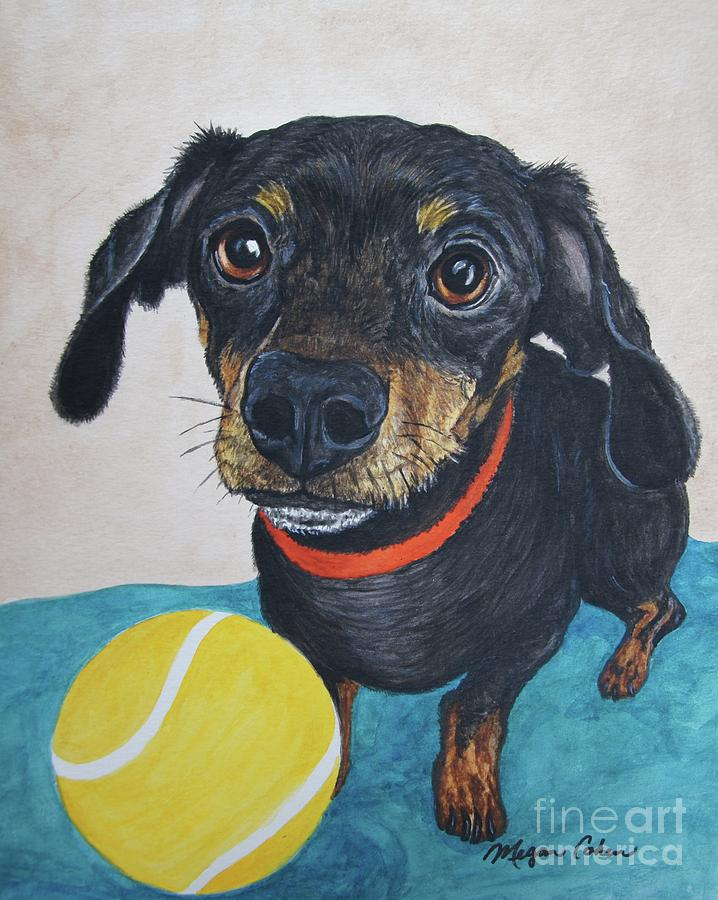 Dachshund Painting - Playful Dachshund by Megan Cohen