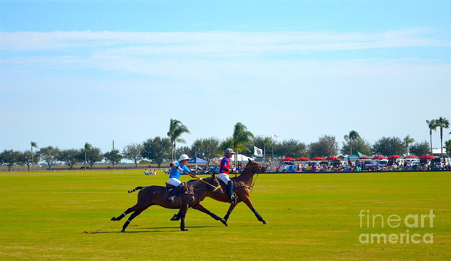 Polo Photograph - Playing Polo by Karen Francis