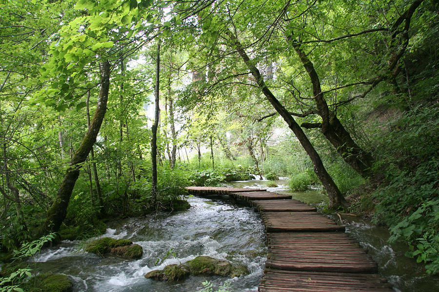 Plitvice Lakes National Park Photograph by Travel Pics