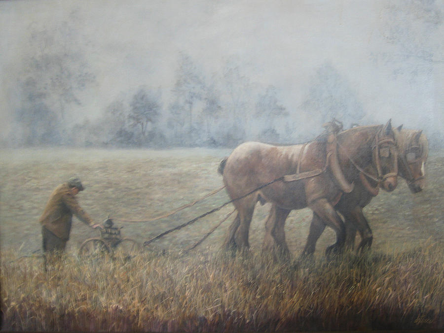 Oil Painting - Plowing It The Old Way by Donna Tucker