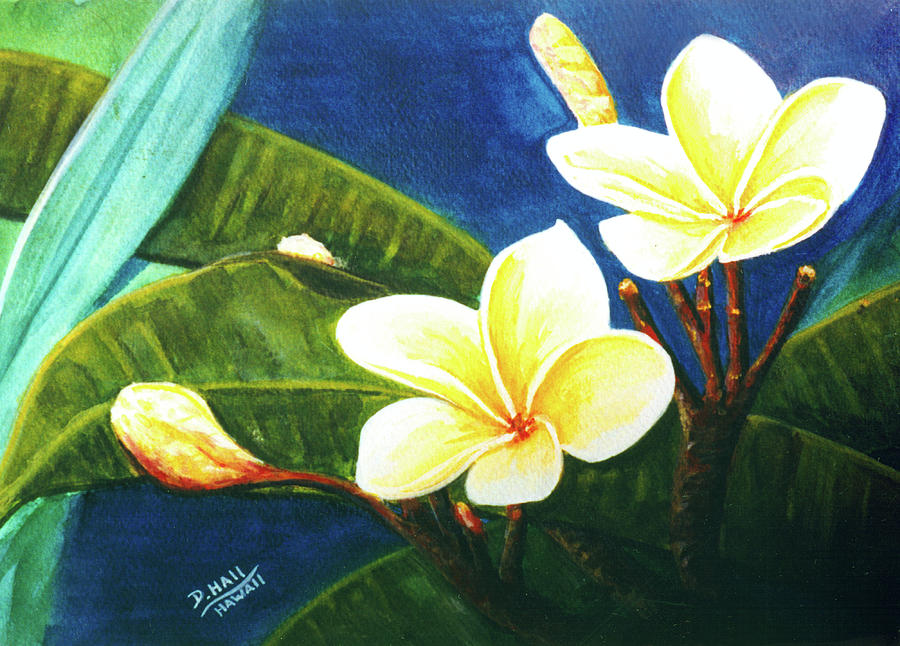 Plumeria Painting - Plumeria Flower # 140 by Donald k Hall