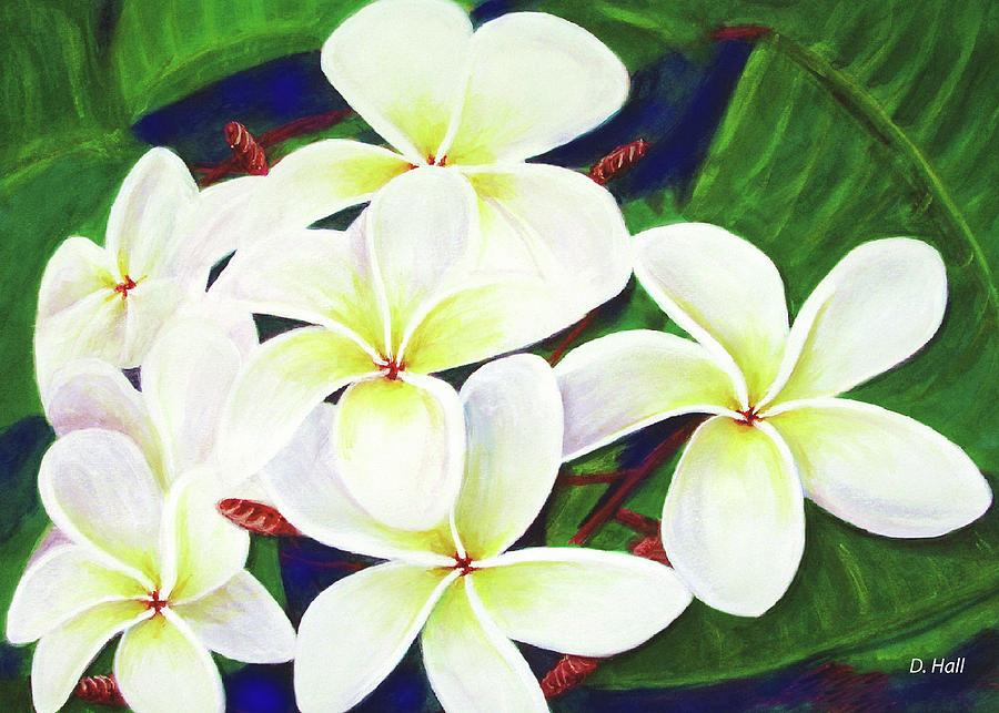 Plumeria Painting - Plumeria Flower #289 by Donald k Hall