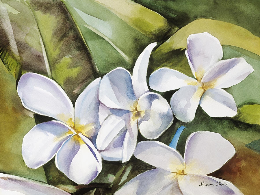 Arrange Painting - Plumeria II by Han Choi - Printscapes