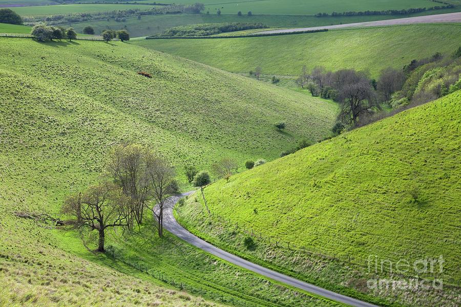 Pocklington Lane In Pasture Dale Photograph by Gavin Dronfield