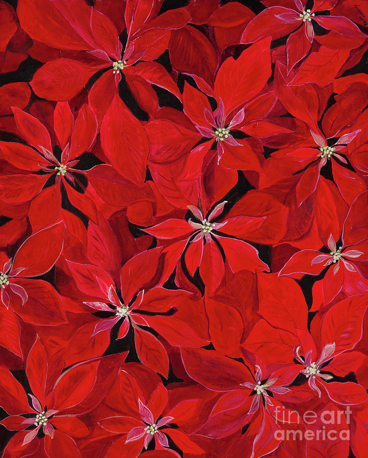Poinsettia Painting - Poinsettia by Carla Dabney