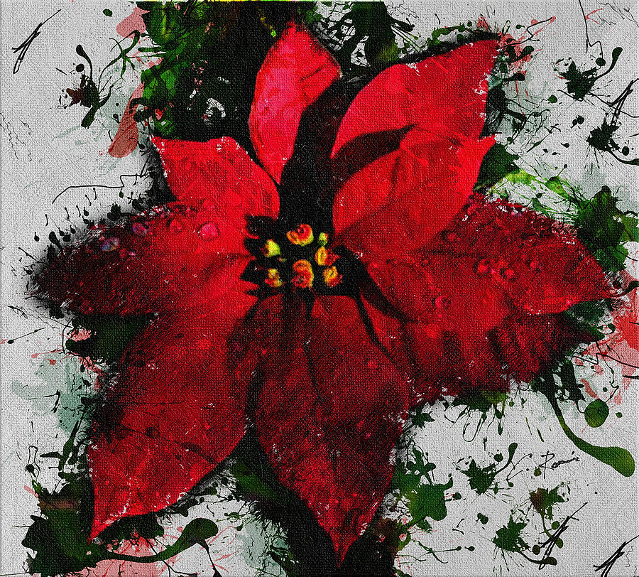 Poinsettia by Charlie Roman