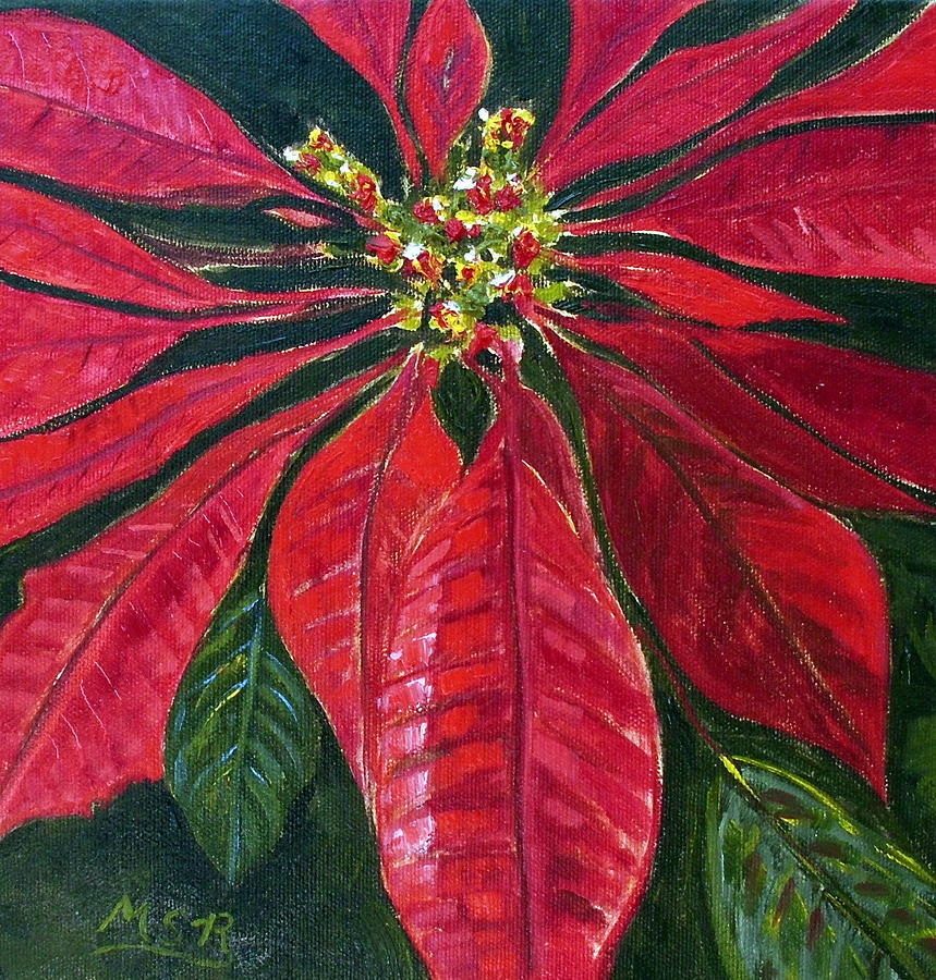 Poinsettia Painting - Poinsettia Closeup by Maria Soto Robbins