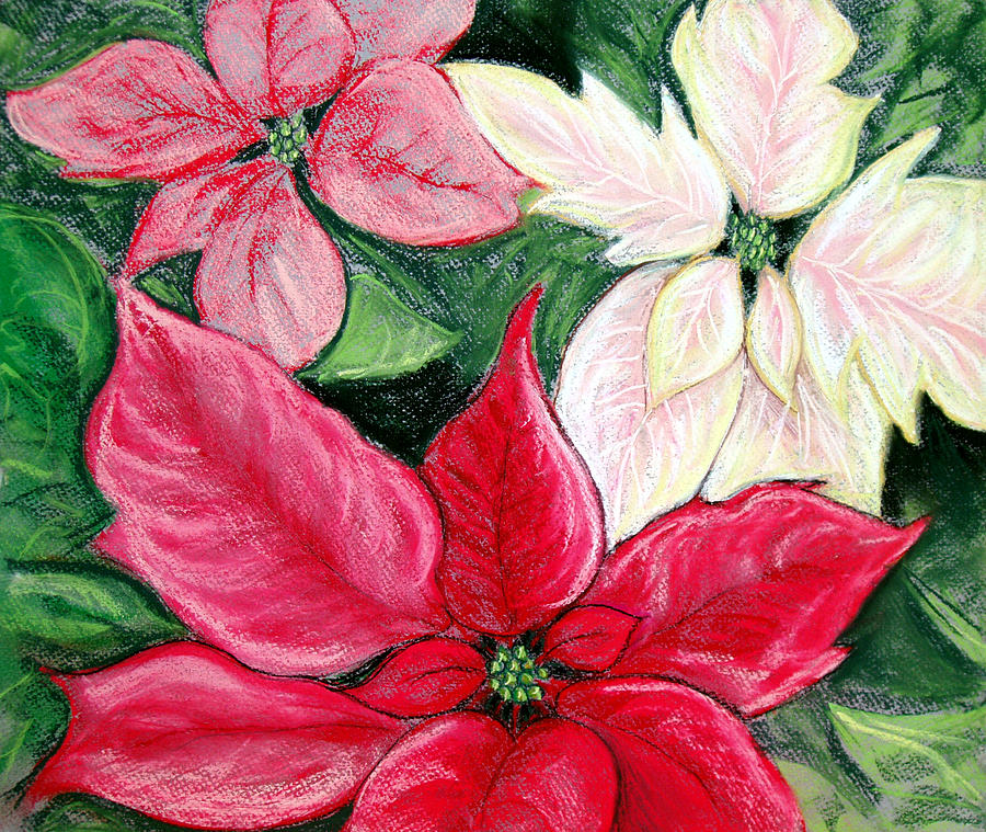 Poinsettia Pastel - Poinsettia Pastel by Nancy Mueller