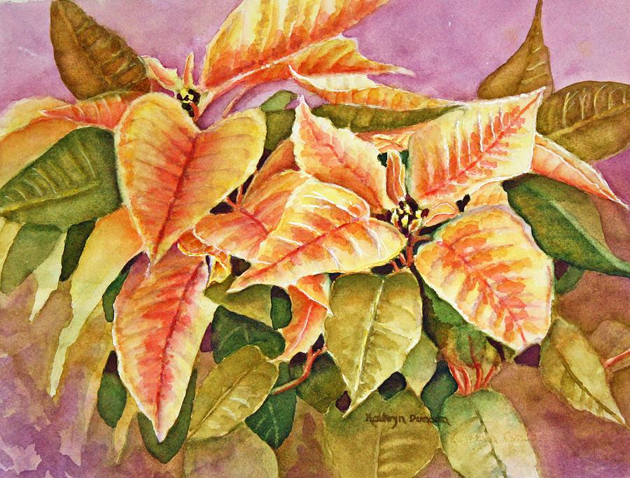 Poinsettias by Kathryn Duncan