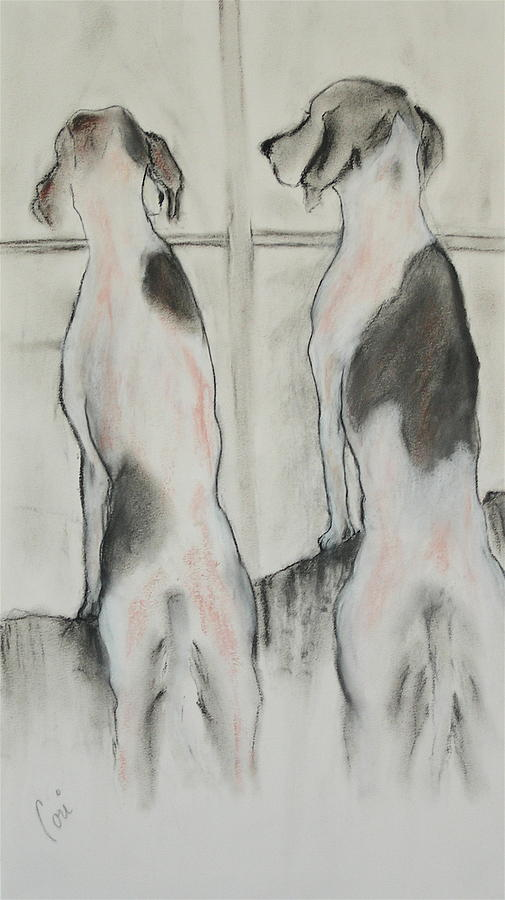 Pastel Drawing - Point Of View by Cori Solomon