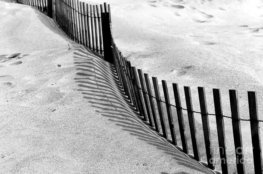 Dune Photograph - Point Pleasant Dune by John Rizzuto