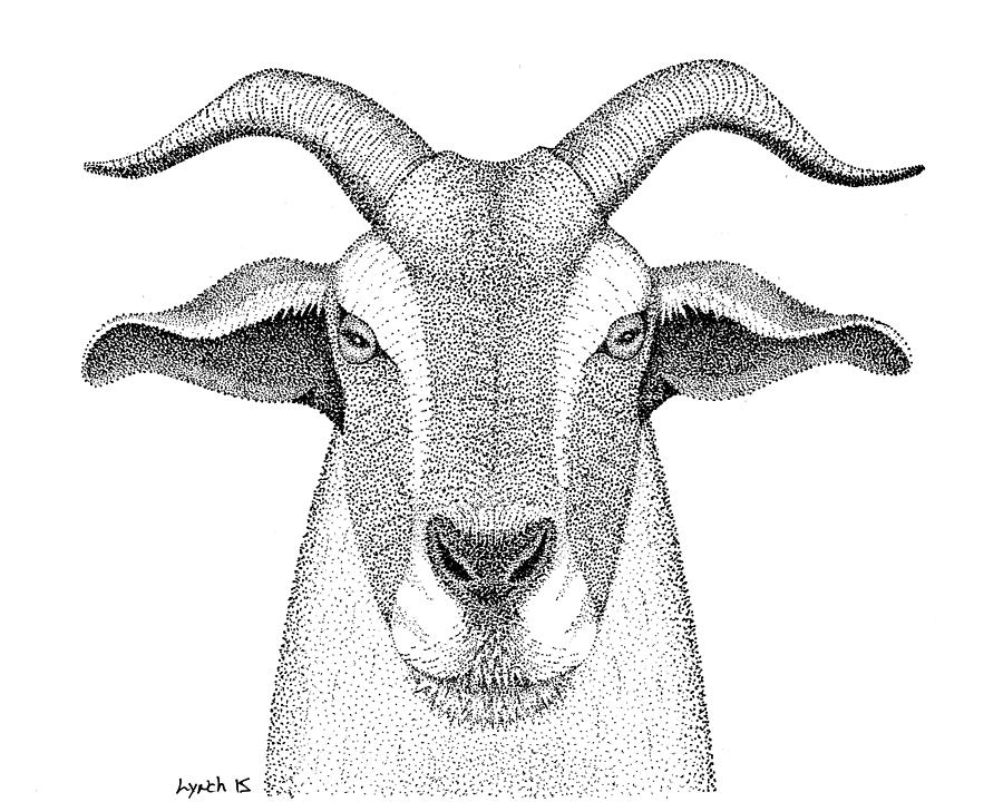 Goat Digital Art - Farm Goat In Pointillism by Gerald Lynch