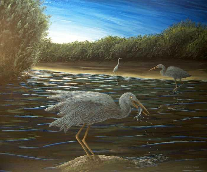 Heron Painting - poise  Great Blue Heron by Cedric Colond