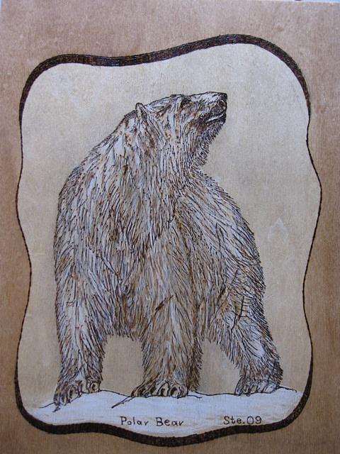 Landscape Pyrography - Polar Bear by Steven Steven