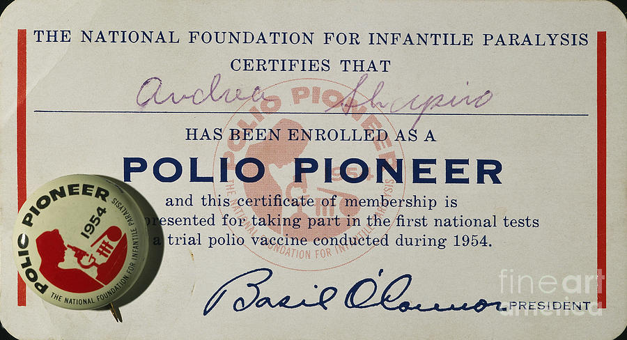 1954 Photograph - Polio Certificate, 1954 by Granger