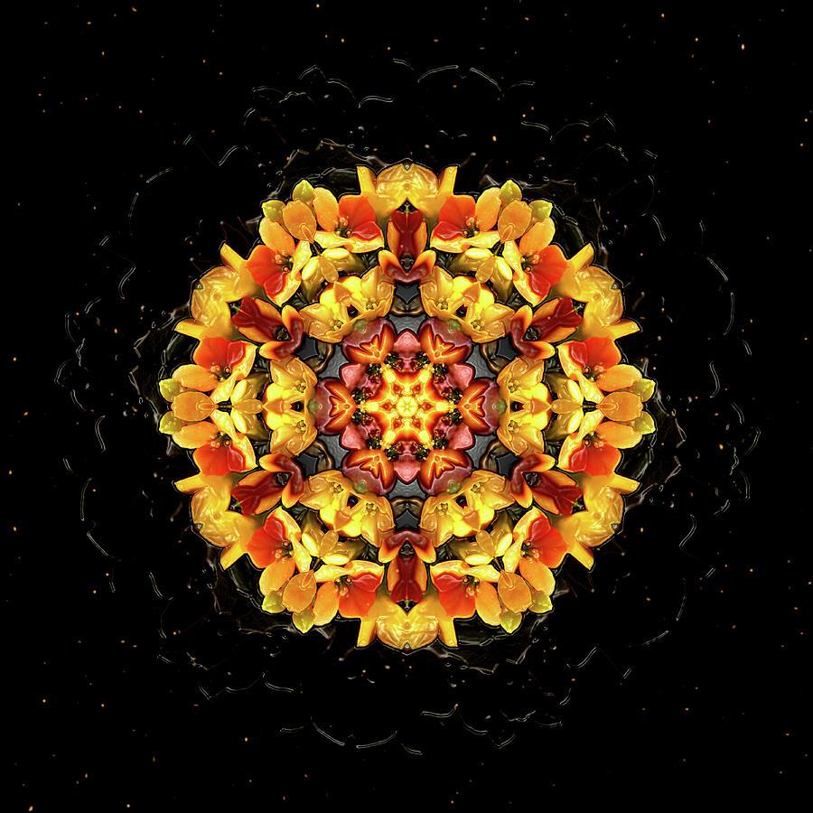 Pollen Is In The Air Digital Art