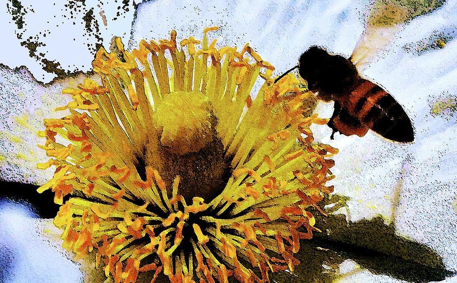 Pollinating Digital Art - Pollinating by Ronald Irwin