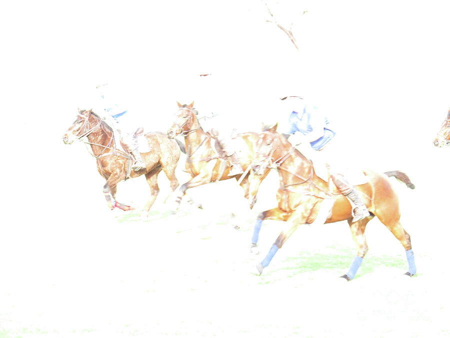 Polo Ponies 2 by Christy Garavetto