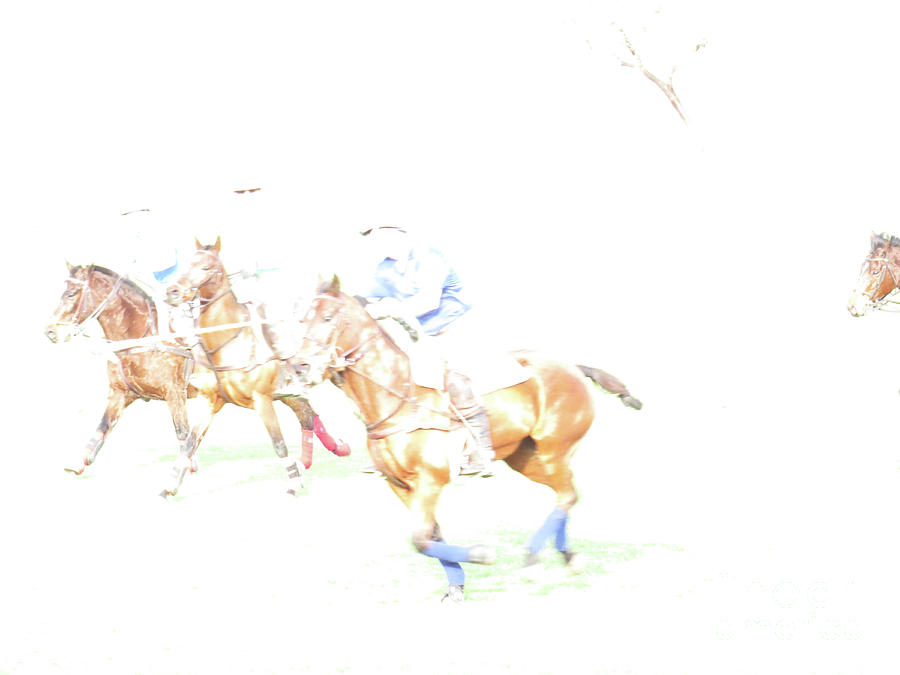 Polo Ponies 3 by Christy Garavetto