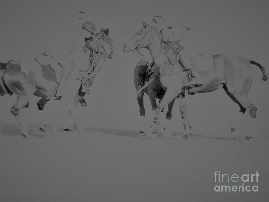 Polo Ponies by Christy Garavetto