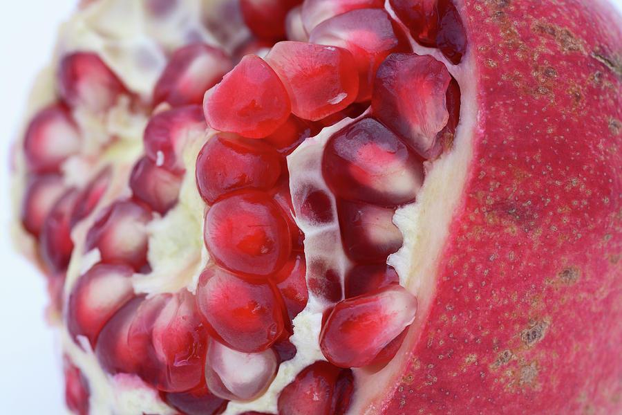 Pomegranate Photograph - Pomegranate by Frank Tschakert