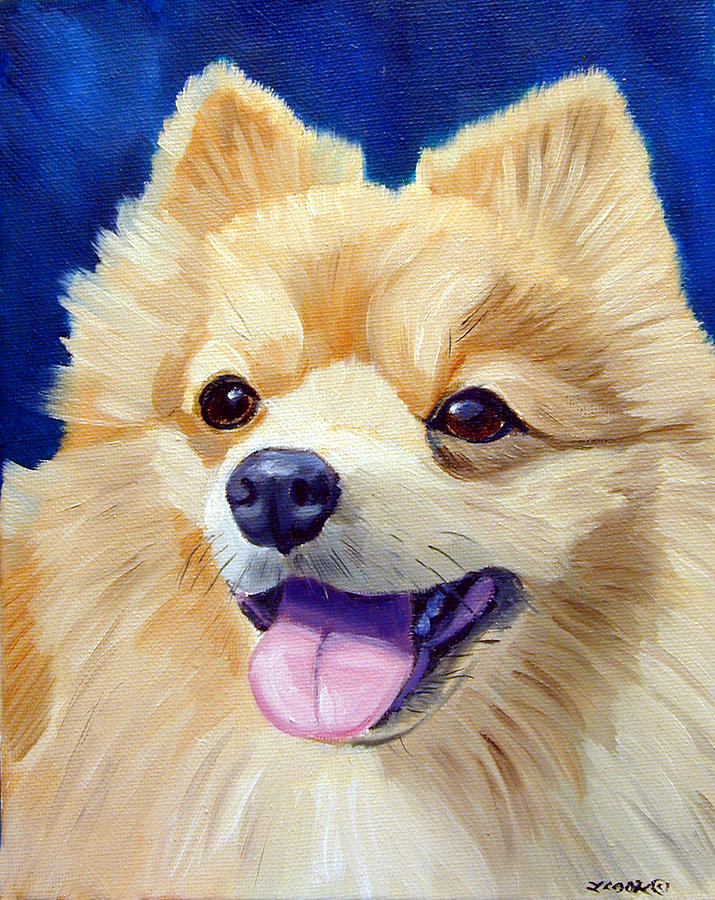 Pomeranian Dog Painting - Pomeranian by Lyn Cook