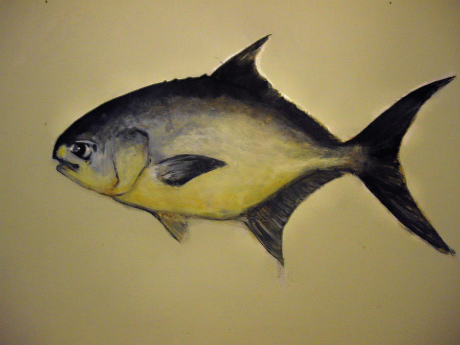 Pompano Fish Painting - Pompano by Robert Cunningham