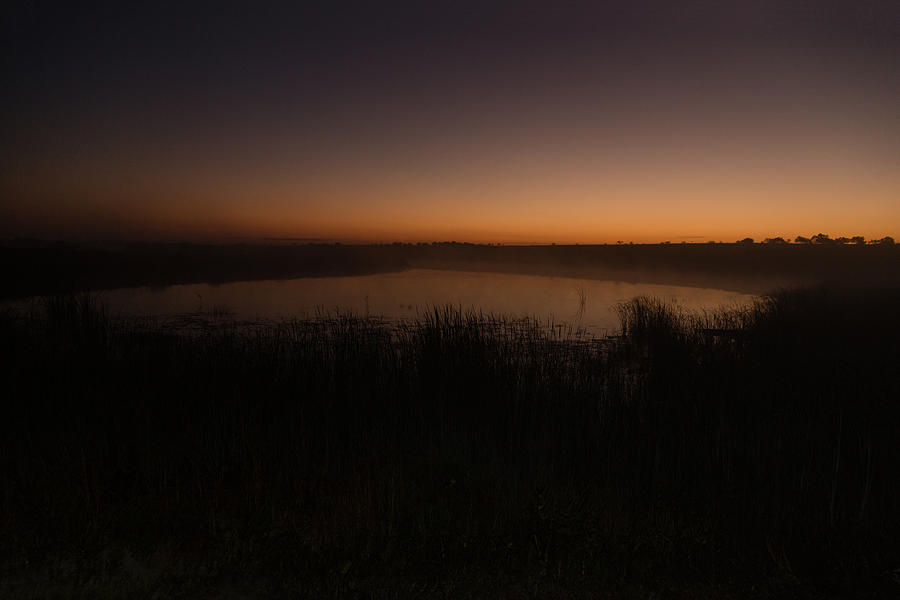 Pond and Cattails at Sunrise by Steven Schwartzman