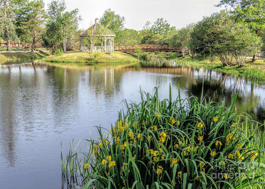 Plymouth Ma Photograph - Pond And Gazebo At Cordage Park   by Janice Drew