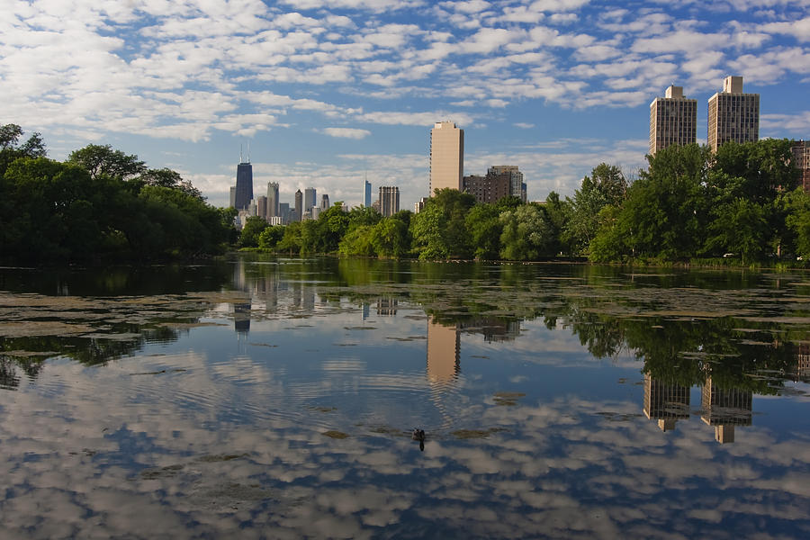 Chicago Skyline Photograph - Pond And The Chicago Skyline by Sven Brogren