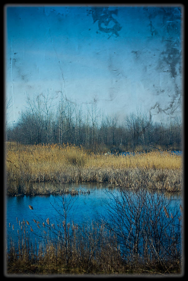 Field Photograph - Pond In The Field by Michel Filion