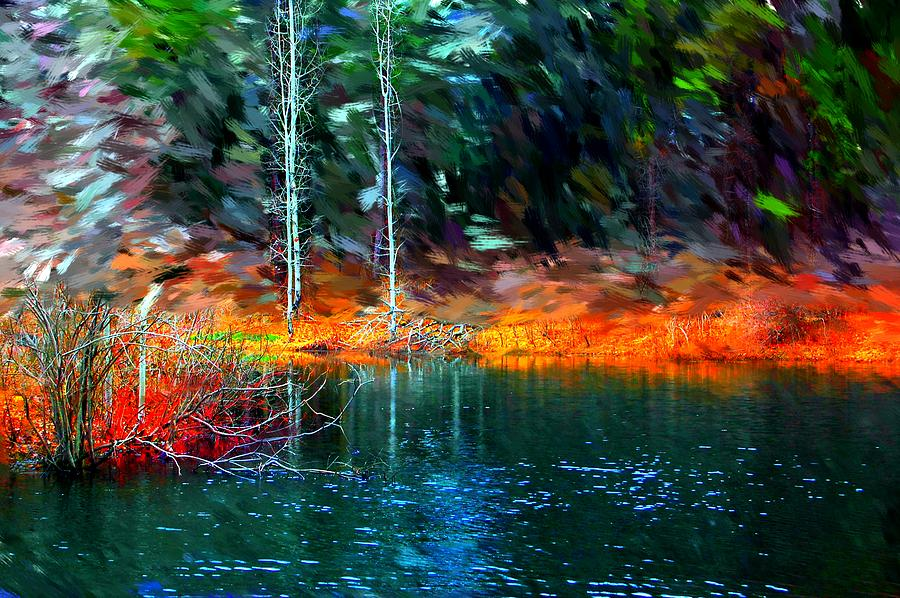 Digital Photograph Photograph - Pond In The Woods by David Lane