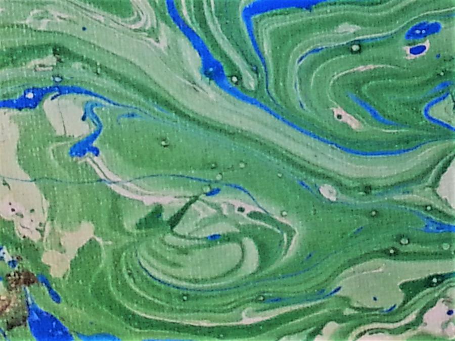 Pond Swirl 1 Painting by Jan Pellizzer
