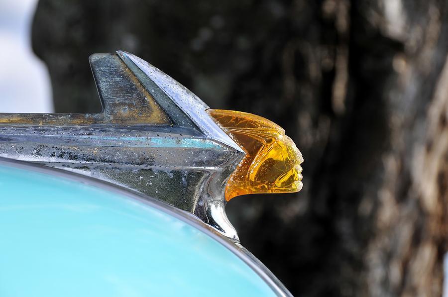 Pontiac Photograph - Pontiac by David Lee Thompson
