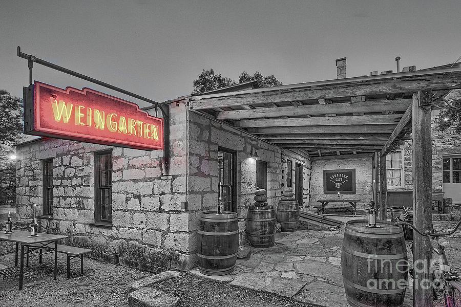 Pontotoc Vineyard Weingarten_6 by Sam Stanton