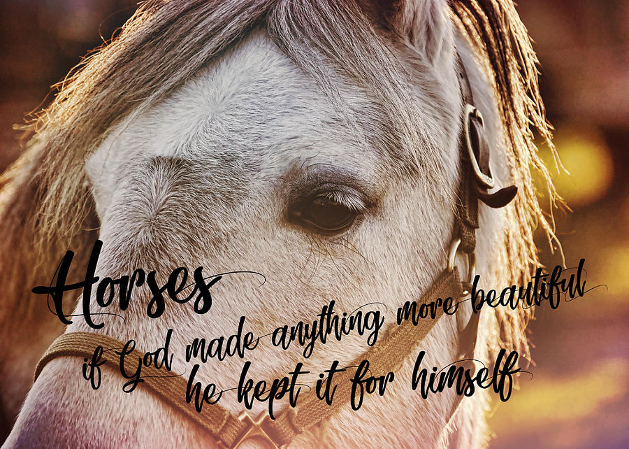 Horse Photograph - Pony At Sunset Quote by JAMART Photography