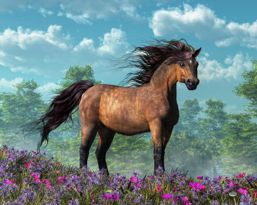 Pony Digital Art - Pony by Daniel Eskridge