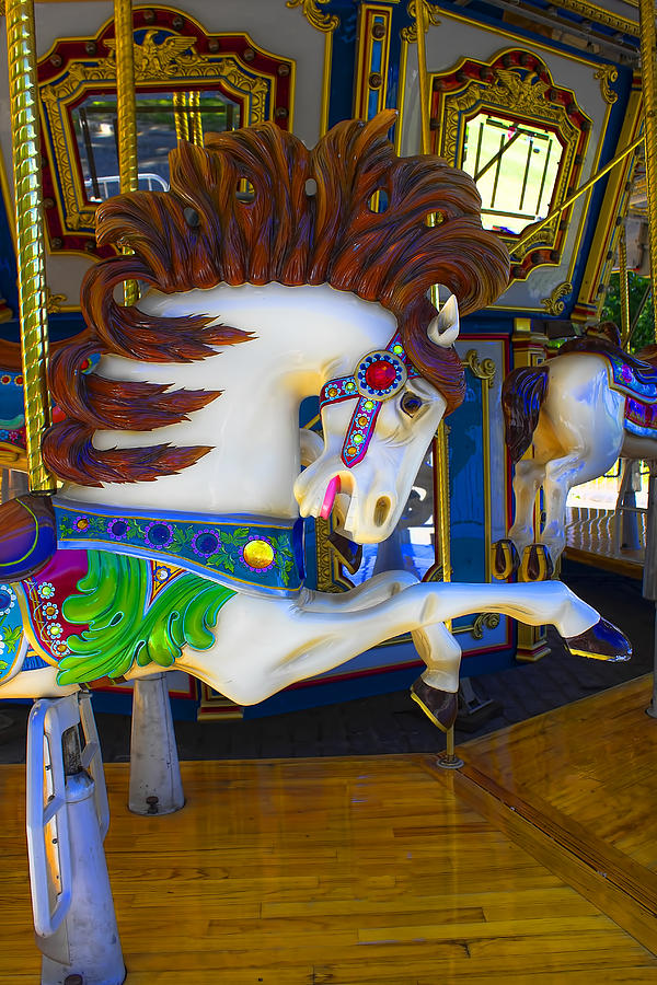 Horse Photograph - Pony Carousel - Pony Series 6 by Carlos Diaz