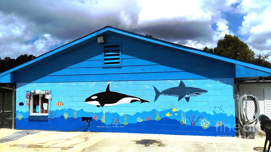 Pool Mural by Stacy C Bottoms