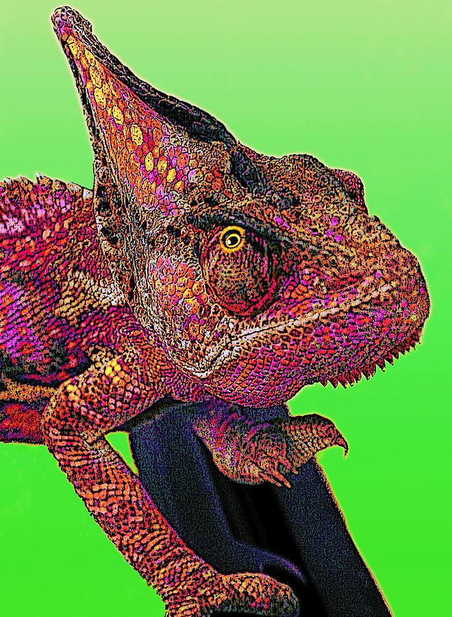 Veiled Chameleon Digital Art - Pop Art Chameleon by L S Keely